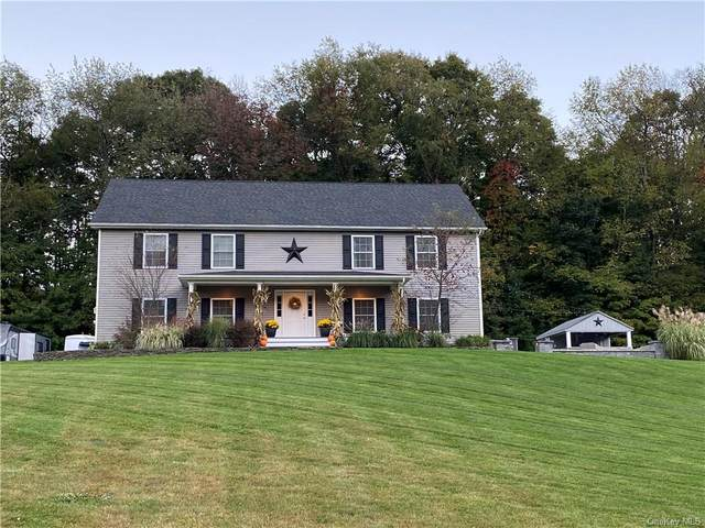 76 Whitford Road, Westtown, NY 10998 (MLS #H6147550) :: Corcoran Baer & McIntosh