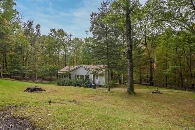 17 Heard Road, Blooming Grove, NY 10914 (MLS #H6147554) :: Cronin & Company Real Estate