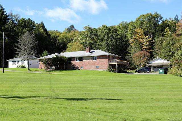 9741 State Route 97, Callicoon, NY 12723 (MLS #H6147560) :: Goldstar Premier Properties