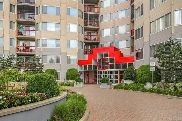 10 Stewart Place 3GW, White Plains, NY 10603 (MLS #H6147591) :: Cronin & Company Real Estate