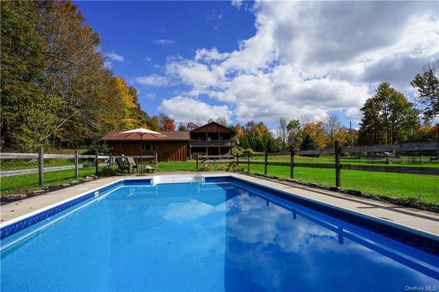 311 Menges Road, Youngsville, NY 12791 (MLS #H6147724) :: Barbara Carter Team