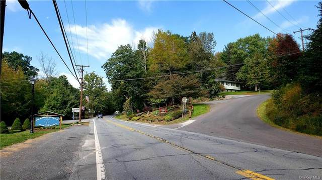 State Route 55, Neversink, NY 12765 (MLS #H6147771) :: Cronin & Company Real Estate