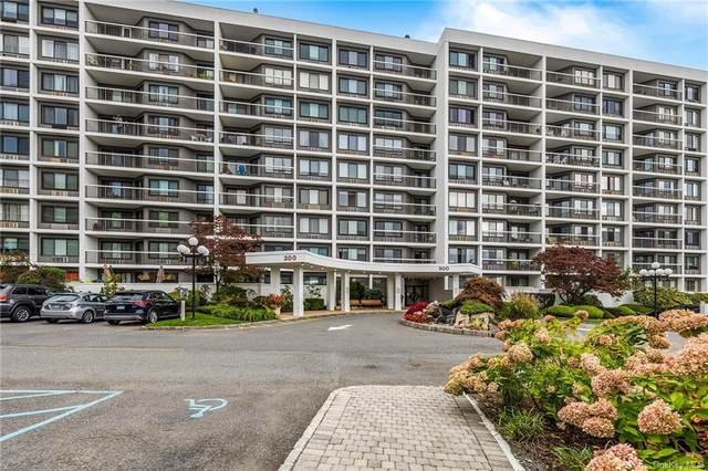 300 High Point Drive #605, Hartsdale, NY 10530 (MLS #H6147776) :: Corcoran Baer & McIntosh