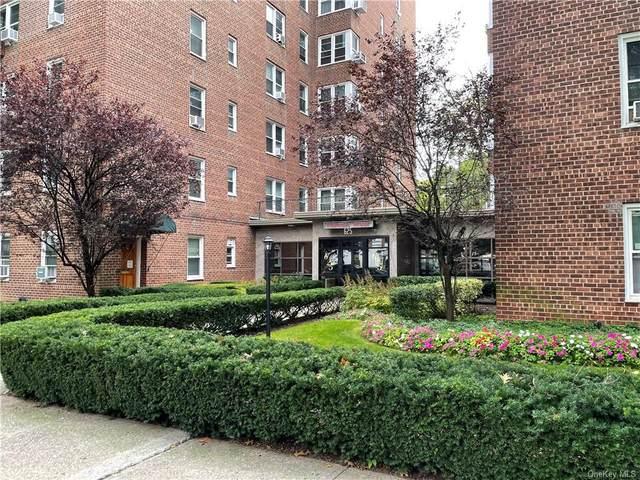 625 Gramatan Avenue 1F, Mount Vernon, NY 10552 (MLS #H6147781) :: Barbara Carter Team