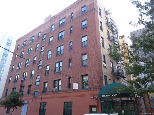 530 E 159th Street #43, Bronx, NY 10451 (MLS #H6147814) :: Goldstar Premier Properties