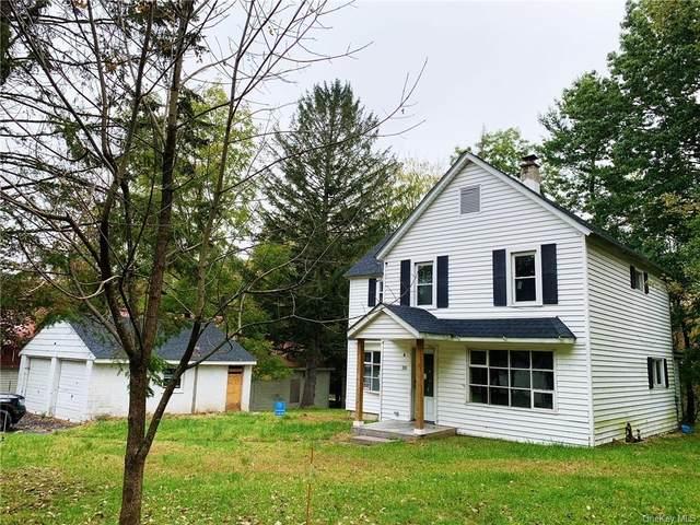 20 3rd Avenue, Narrowsburg, NY 12764 (MLS #H6147836) :: Cronin & Company Real Estate