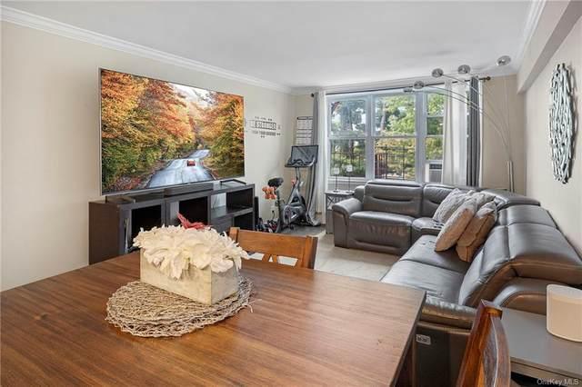 43 Bronx River Road 7P, Yonkers, NY 10704 (MLS #H6147873) :: Cronin & Company Real Estate