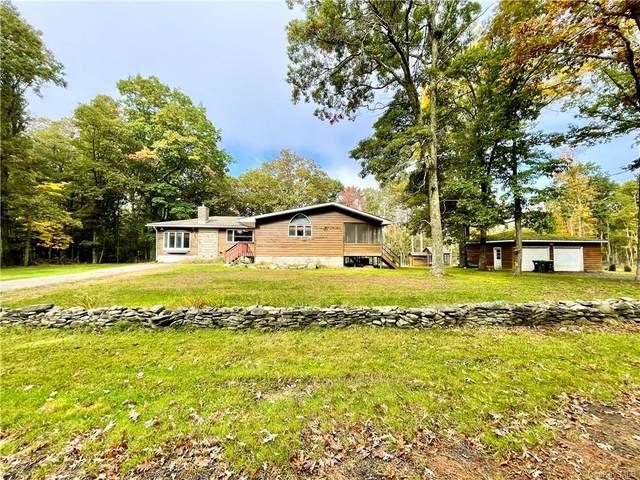 356 Irishtown Road, Narrowsburg, NY 12764 (MLS #H6147880) :: Carollo Real Estate