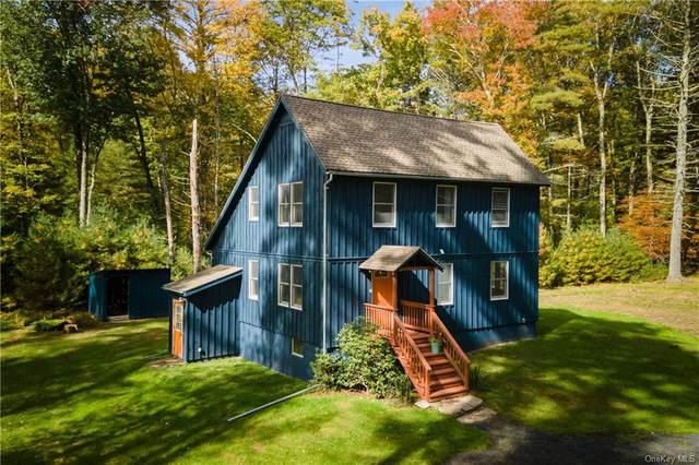 35 Peach Basket Drive, Glen Spey, NY 12737 (MLS #H6147903) :: Carollo Real Estate