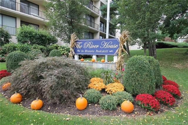 152 Overlook Avenue 1D, Peekskill, NY 10566 (MLS #H6148171) :: Mark Seiden Real Estate Team