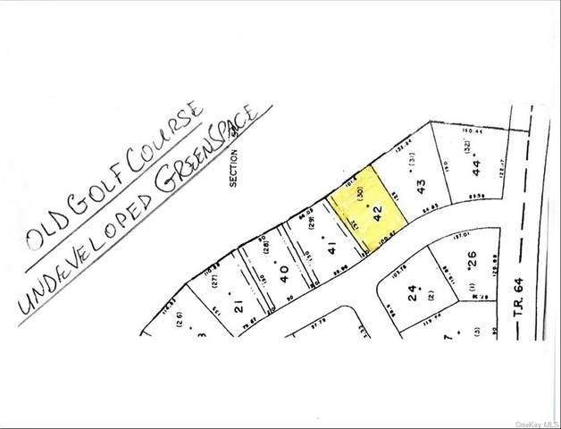 (1-42) Picadilly Circle, Rock Hill, NY 12775 (MLS #H6148247) :: Signature Premier Properties