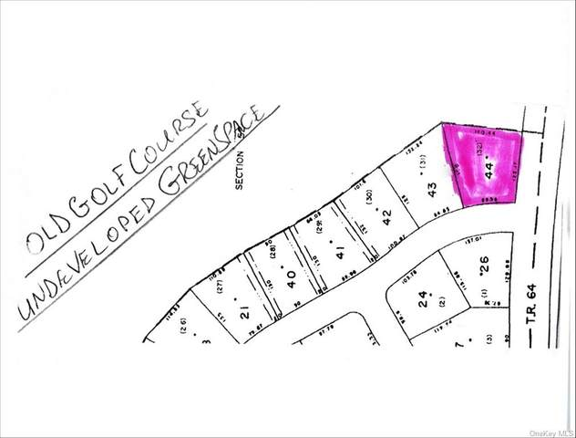 (1-44) Picadilly Circle, Rock Hill, NY 12775 (MLS #H6148249) :: Cronin & Company Real Estate