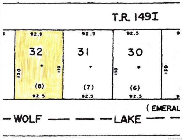 (4-32) Lake Shore Drive S, Rock Hill, NY 12775 (MLS #H6148256) :: Signature Premier Properties