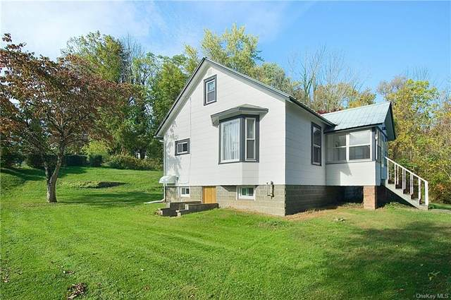 39 State Route 55, Napanoch, NY 12458 (MLS #H6148260) :: The SMP Team
