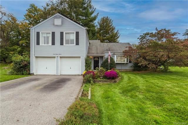 411 Philo Street, New Windsor, NY 12553 (MLS #H6148265) :: Signature Premier Properties