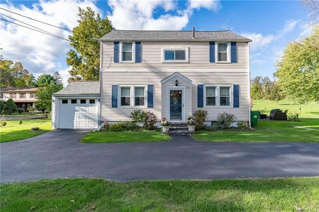 319 Beekman Road, Hopewell Junction, NY 12533 (MLS #H6148270) :: Cronin & Company Real Estate