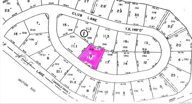 (1-19) Club Lane, Rock Hill, NY 12775 (MLS #H6148293) :: RE/MAX RoNIN