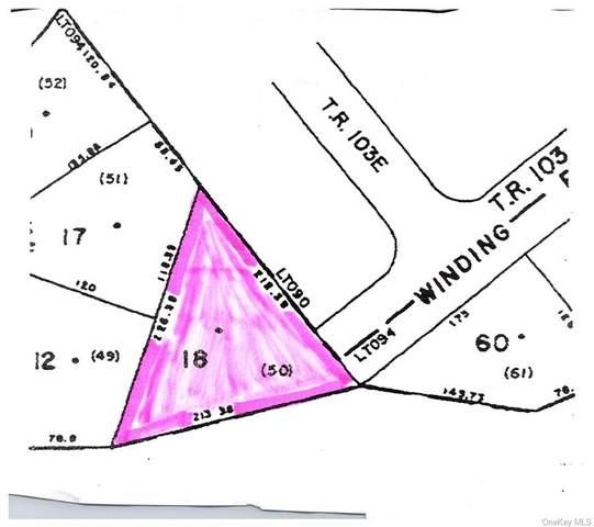(1-18) Straight Path, Rock Hill, NY 12775 (MLS #H6148294) :: Cronin & Company Real Estate
