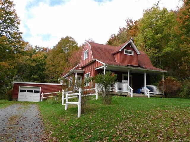 57 Corrigan Road, Liberty, NY 12754 (MLS #H6148312) :: Carollo Real Estate