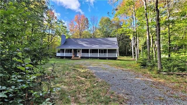 68 Schleiermacher Road, Livingston Manor, NY 12758 (MLS #H6148325) :: Cronin & Company Real Estate