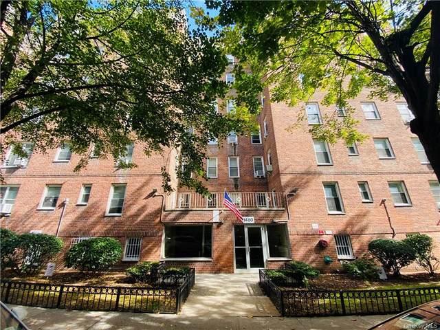 1480 Thieriot Avenue 5M, Bronx, NY 10462 (MLS #H6148426) :: Goldstar Premier Properties