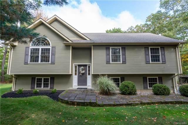 476 Yankee Lake Road, Wurtsboro, NY 12790 (MLS #H6148439) :: Carollo Real Estate