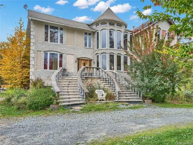 145 Haddock Road, Monticello, NY 12701 (MLS #H6148459) :: Carollo Real Estate