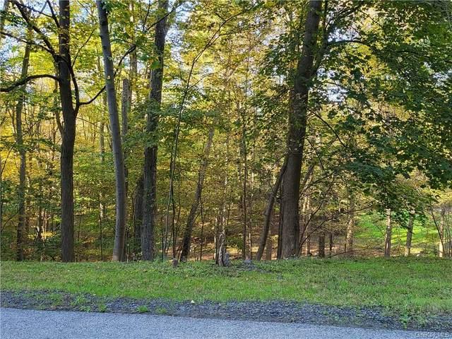 Stacy Lee Drive, Newburgh, NY 12550 (MLS #H6148490) :: Corcoran Baer & McIntosh