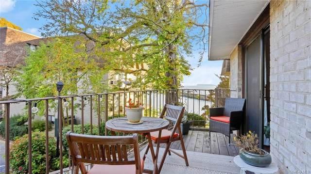 313 Kemeys Cove, Briarcliff Manor, NY 10562 (MLS #H6148512) :: Mark Seiden Real Estate Team