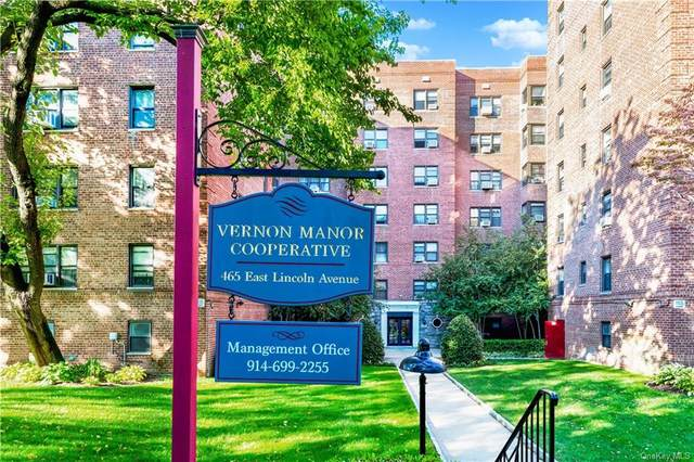 465 E. Lincoln #402, Mount Vernon, NY 10552 (MLS #H6148613) :: RE/MAX RoNIN