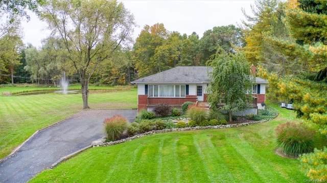 225 Crans Mill Road, Pine Bush, NY 12566 (MLS #H6148649) :: Cronin & Company Real Estate