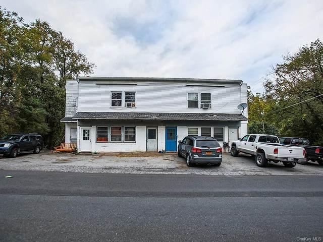 12 Clay Hill Road, Kerhonkson, NY 12446 (MLS #H6148658) :: The McGovern Caplicki Team