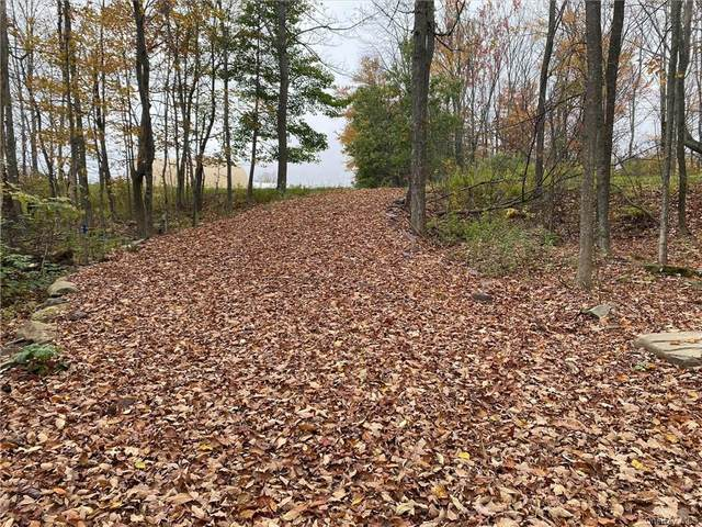 Crosstown Highway, Other, NY 18439 (MLS #H6148685) :: RE/MAX RoNIN