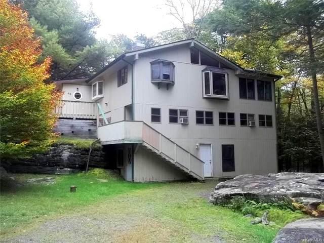 48 Galia Road, Bethel, NY 12720 (MLS #H6148774) :: Carollo Real Estate