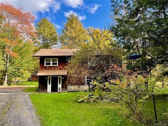 571 White Sulphur Road, Swan Lake, NY 12783 (MLS #H6148810) :: Mark Boyland Real Estate Team