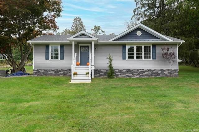 6 Smalley Lane, Stormville, NY 12582 (MLS #H6148888) :: Cronin & Company Real Estate