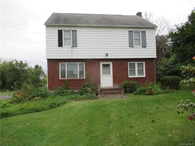670 County Route 1, Pine Island, NY 10969 (MLS #H6148895) :: Mark Boyland Real Estate Team