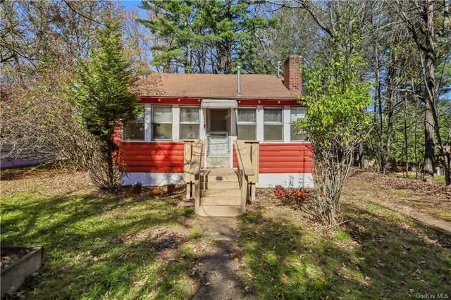 117 E Thompson Place, Bethel, NY 12720 (MLS #H6148941) :: Cronin & Company Real Estate