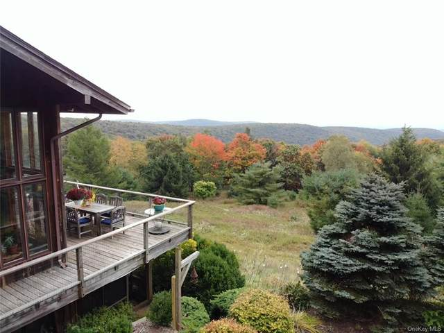60 Dinch Road, Claryville, NY 12725 (MLS #H6148951) :: Cronin & Company Real Estate