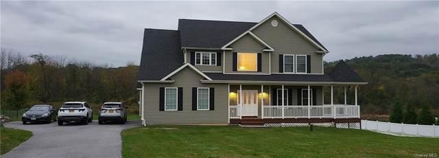 15 Abbe Road, Goshen, NY 10924 (MLS #H6148964) :: Cronin & Company Real Estate