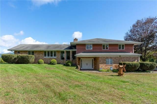 56 Hi View Drive, Wingdale, NY 12594 (MLS #H6148974) :: Cronin & Company Real Estate