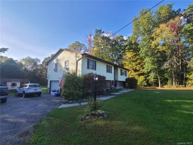 37 Colden Hill Road, Newburgh, NY 12550 (MLS #H6149033) :: Goldstar Premier Properties