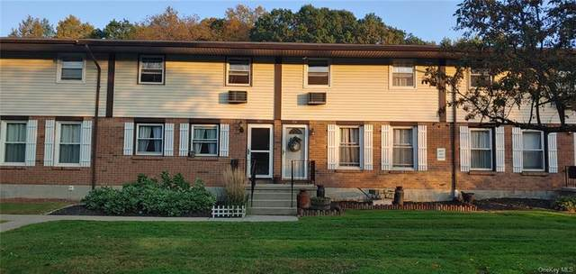 303 Parr Meadow Drive 3C, Newburgh, NY 12550 (MLS #H6149044) :: Signature Premier Properties