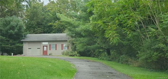 160 Brookside Farms Road, Newburgh, NY 12550 (MLS #H6149048) :: Barbara Carter Team