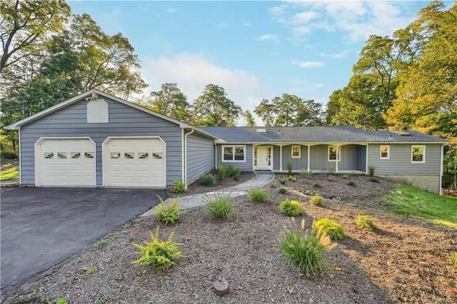 101 Helms Hill Road, Washingtonville, NY 10992 (MLS #H6149146) :: Cronin & Company Real Estate