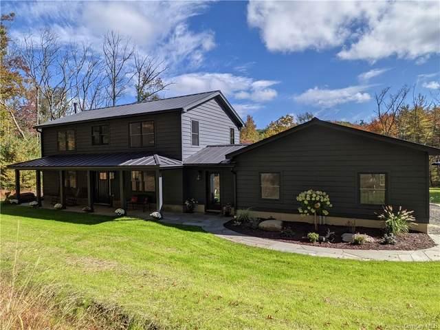 238 Chestnut Hill Road, Stone Ridge, NY 12484 (MLS #H6149181) :: Cronin & Company Real Estate