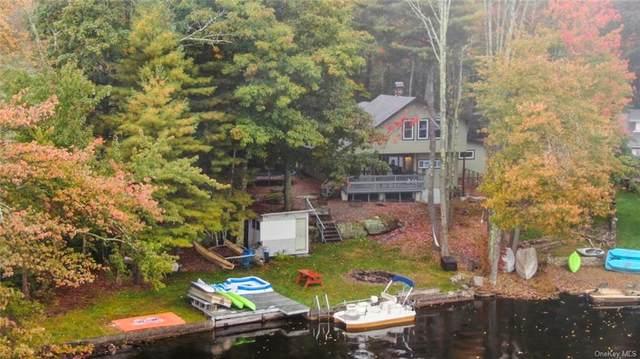 313 N Shore Drive, Wurtsboro, NY 12790 (MLS #H6149192) :: Carollo Real Estate
