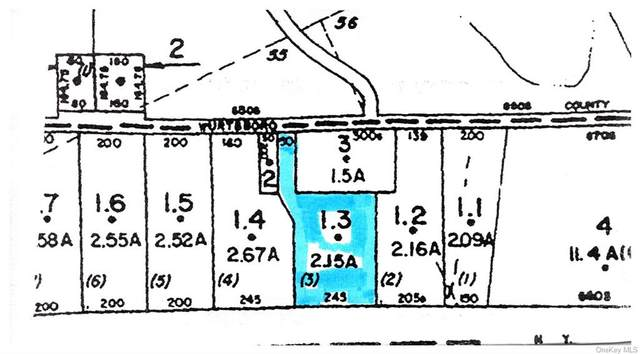 (2-1.3) Wurtsboro Mountain Road, Wurtsboro, NY 12790 (MLS #H6149195) :: Cronin & Company Real Estate