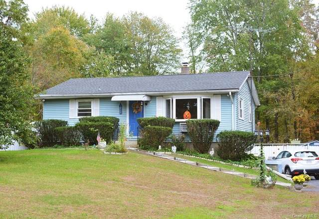 392 State Route 208, New Paltz, NY 12561 (MLS #H6149227) :: Cronin & Company Real Estate
