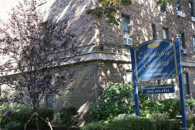 531 E Lincoln Avenue 2B, Mount Vernon, NY 10552 (MLS #H6149247) :: Barbara Carter Team
